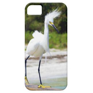 Wind blown Snowy Egret iPhone SE/5/5s Case