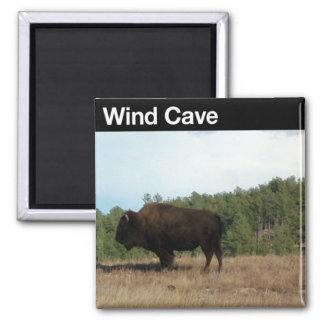 Wind Cave NP Refrigerator Magnet