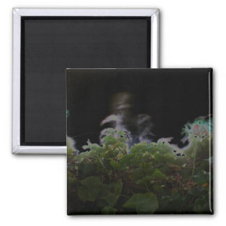 Wind In The Night 2 Inch Square Magnet