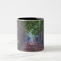 Wind in the Pines Mug