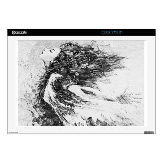 "wind.jpg skin for 17"" laptop"