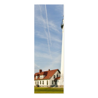 Wind Point Lighthouse Double-Sided Mini Business Cards (Pack Of 20)
