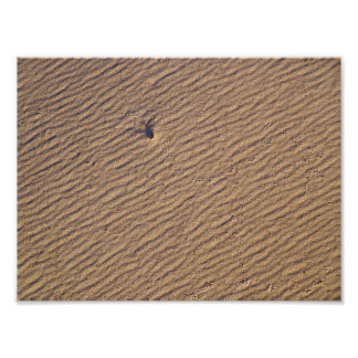 Wind Ripples in Sand VI - Color Saturated Poster