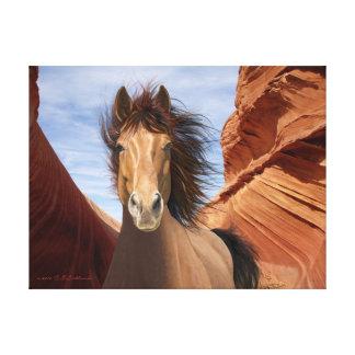 Wind Runner Wild Stallion Print on Canvas