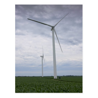 Wind Turbines in Cornfield Postcard