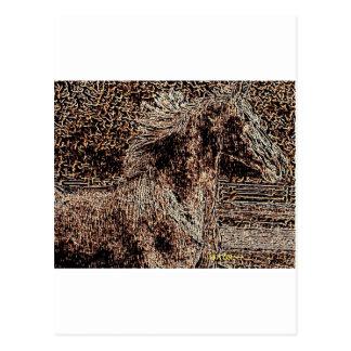 Windblown Mane Postcard