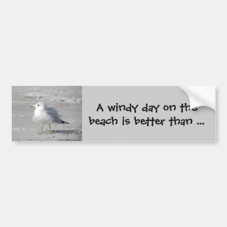 Windblown seagull bumper sticker