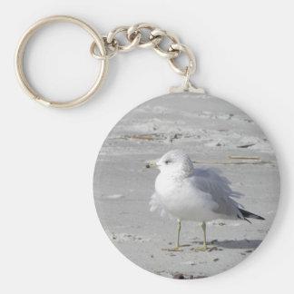 Windblown seagull keychain