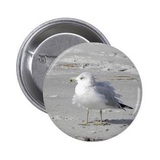 Windblown seagull pin