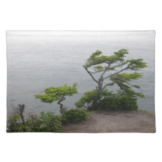 Windblown Trees Cloth Placemat