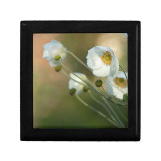 windflowers blancos en una exhibición natural joyero cuadrado pequeño