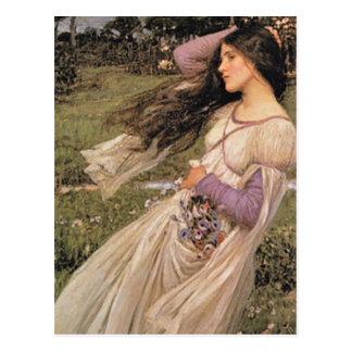 WiNDFLoWERS, by John William Waterhouse, 1902 Postcard
