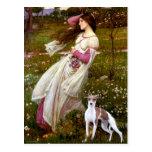 Windflowers - Italian Greyhound 7 Post Card