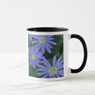 Windflowers Mug