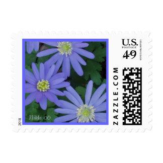 Windflowers Postage Stamp