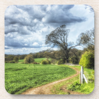 Winding Country Path HDR Coaster