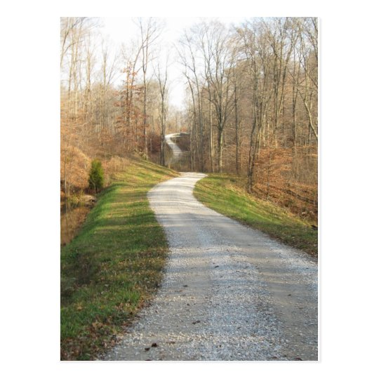Winding Country Road Postcard
