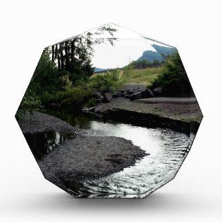 Winding Creek I Award