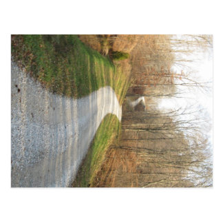 Winding Midwestern Country Road Postcard
