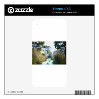 Winding Path Decal For The iPhone 4S