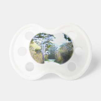 Winding Path Pacifier