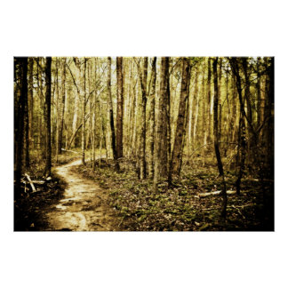 Winding Path Poster