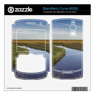 Winding River By The Coast BlackBerry Curve Decal