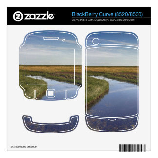 Winding River By The Coast BlackBerry Skins