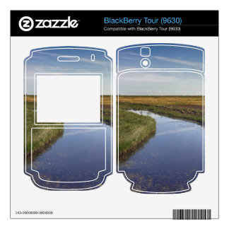 Winding River By The Coast BlackBerry Tour Decals
