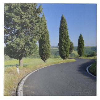 Winding Road Lined with Cypress Trees, Val Ceramic Tile