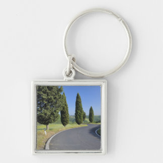 Winding Road Lined with Cypress Trees, Val Keychain
