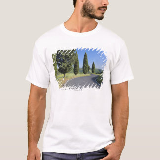 Winding Road Lined with Cypress Trees, Val T-Shirt