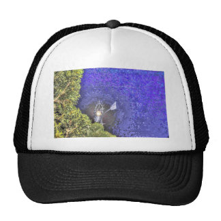 WINDMILL AND FULL MOON AUSTRALIA WITH ART EFFECTS TRUCKER HAT