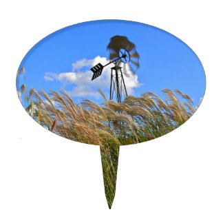 Windmill and grasses cake topper