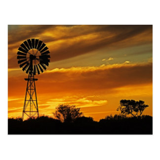 Windmill and Sunset, William Creek, Oodnadatta Postcard
