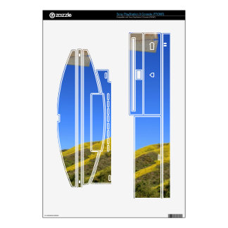 Windmill Decals For PS3 Console