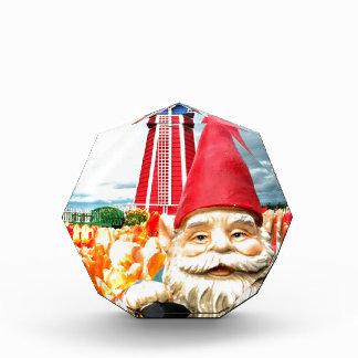 Windmill Gnome Award