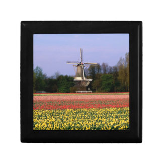 Windmill in the bulb fields gift boxes