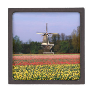 Windmill in the bulb fields premium trinket boxes