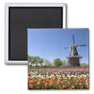 Windmill Island park with tulips in bloom at Magnet