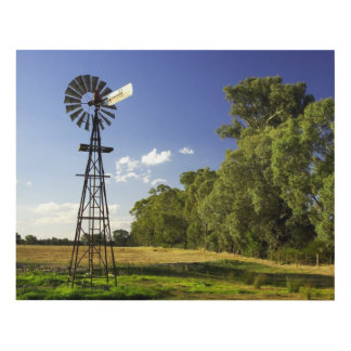 Windmill near Hume Highway, Victoria, Australia Panel Wall Art