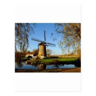 windmill Netherland Landscape Postcard