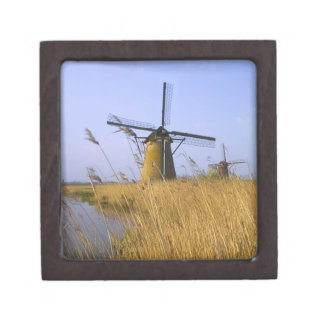 Windmills along the canal in Kinderdijk, 2 Jewelry Box