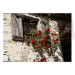 Window and Roses Stationery Note Card
