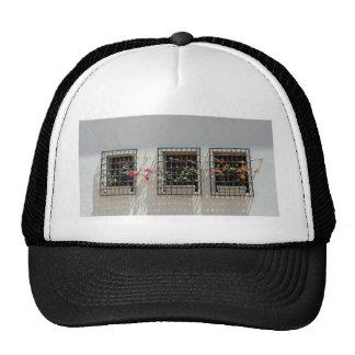 window and wall trucker hat