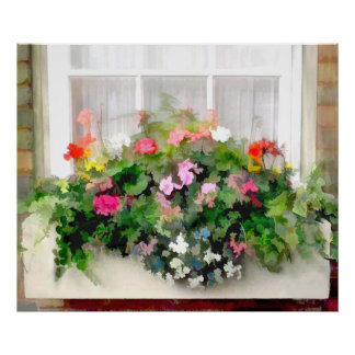 Window Box of Colorful, Cascading Mixed Flowers Posters
