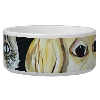 Window Box Pet bowl