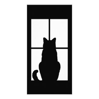 Window Cat Click to Customize Get any color decor Card