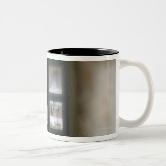 Window dog Two-Tone coffee mug