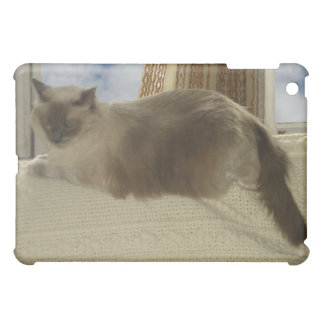 Window dressing case for the iPad mini